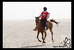 Kuwait Endurance (Najwa Marafie - Free Photographer) Tags: horses horse sport kuwait endurance 2009 najwa aplusphoto nonoq8 marafie