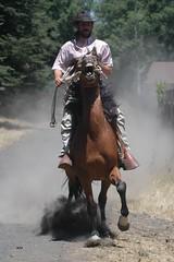 Galopes (X-Cam // Fotografa & Vdeo Areo.-) Tags: caballos jones indiana galope