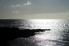Shimmering Sea Hook Head Co. Wexford (murtphillips) Tags: sea martin head phillips hook wexford shimmering murt