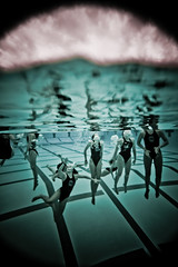 people people everywhere (SARA LEE) Tags: california girls orange reflection water pool clouds swimming university afternoon underwater random bubbles wideangle swimmingpool level split oc polo swimsuits waterpolo chapman vingette sarahlee legothenego womenswaterpolo vivantvie
