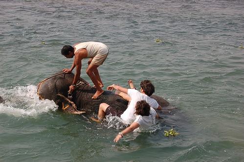 Nepal: Rafting hasta Chitwan y Parque Nacional