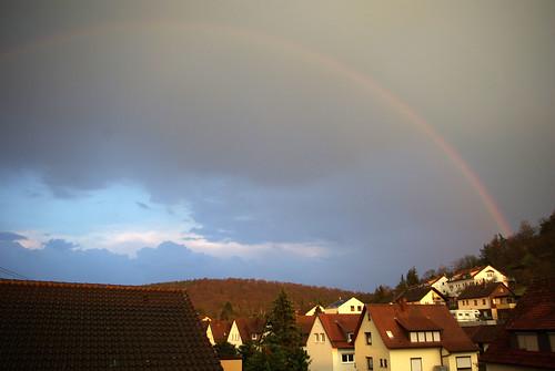 Regenbogen in der Abendsonne