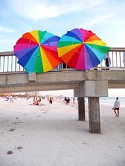 Urban Beach Flowers (Barefoot In Florida) Tags: florida clearwaterbeach