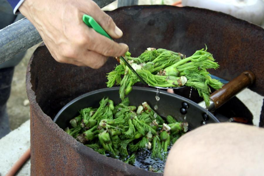 Boiling dureup