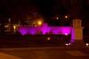 Operation Paint it Purple 128 (gotbob) Tags: canon md purple cancer acs frederick relayforlife slidr frednet carrollcreek operationpaintitpurple