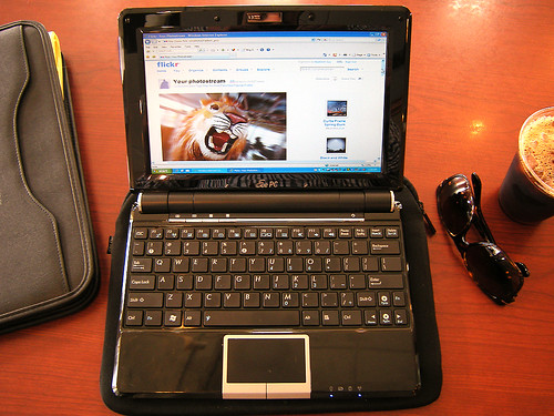 The Little Netbook That Roars Like a Lion