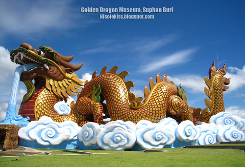 golden dragon museum wallpaper