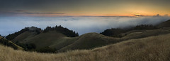 (maxxsmart) Tags: california trees sunset panorama grass fog canon trails hills pacificocean lee mttam marincounty stinsonbeach itch mttamalpais cs3 longpants ndgrads 5dmarkii