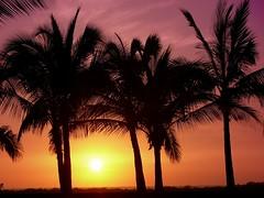 Big Island sunset (acmelucky777 (so busy right now...)) Tags: ocean usa night island hawaii islands us foto pacific panasonic insel pacificocean hawaiian hi nocturnas 2009 aloha dmc notturne fz50 pazifik inseln alohastate  hawaiianislands nachtaufnahmen pazifischerozean 1270734