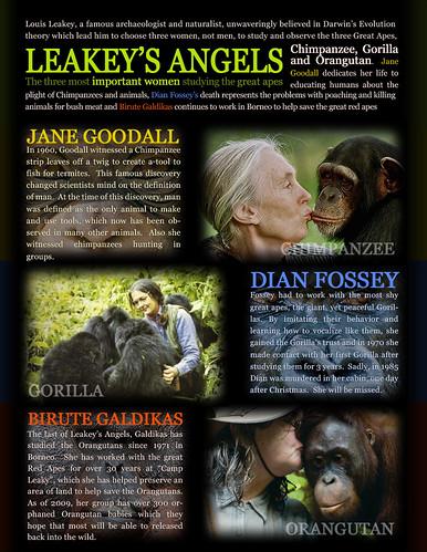 Leakey's Angels - Jane Goodall, Dian Fossey & Birute Galdikas ...