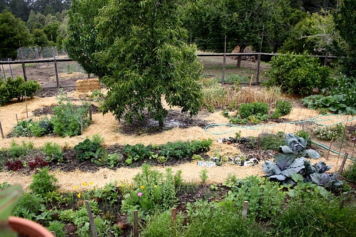 Parents' Garden