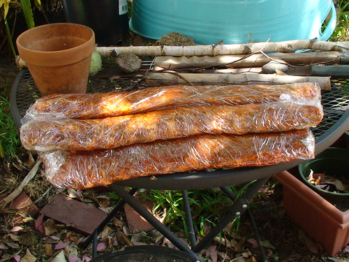 5/9/10 Mothers' Day - BBQ pork ribs