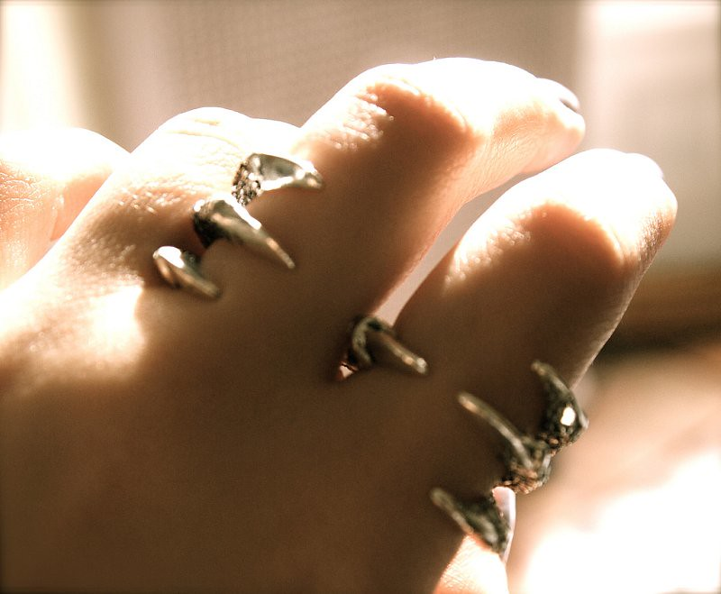 modtoast shop double talon ring