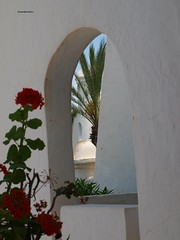 ★ ★ Framed beauty..   Tunisian Republic الجمهورية التونسية al-Jumhūriyya at-Tūnisiyya République tunisienne (☼ƸӜƷ TheFourSeasonsPhotography&more©✿¸.) Tags: lighting flowers blue summer vacation white hot green art sunshine buildings design amazing skies republic shadows tunisia country shapes culture el explore palmtrees archway striking discovery république breathtaking tunisian 2011 ★ التونسية holoiday tunisienne الجمهورية aljumhūriyya attūnisiyya tunisiajune2011 mouradiskanesbeachhotel ★apicturepostcard