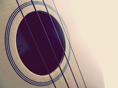 #104 January 15th (PaperTissue) Tags: music cute field yellow canon project ukulele little photos bokeh guitar small year cream daily powershot instrument acoustic marco strings 365 depth g9
