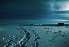 night walk under moon light (AgusValenz) Tags: blue winter snow azul night nikon walk nieve nightshoot coolpix caminar invierno centralasia kazakhstan eurasia p80 explored impressedbeauty  diamondclassphotographer flickrdiamond  karabatan
