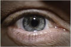 Hard stare (Bashed) Tags: uk iris england selfportrait macro reflection eye me window closeup nikon europe flash neil british eyelash speedlight pupil myeye lightroom d300 nikonsb800 nikkor105vr nikkor105mmf28gvrmicro nikkor105mmf28gifed neilmallett2008