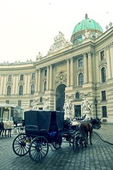 A Fiaker at Hofburg Palace (Gilderic Photography) Tags: vienna wien street city travel vacation horse castle art coffee wheel fog architecture lumix austria europe mood culture palace panasonic empire imperial palais espresso chateau vienne attraction fiaker hofburg touristic rhum coupole fiacre gilderic dmctz4