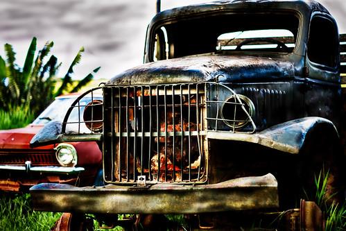 ClicPhoto Studio | www.clicphoto.com.br