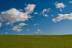Sky-Cloud-Field