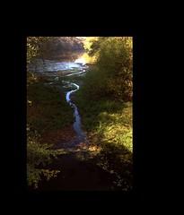 Fundstcke (1) - findings (Lautergold) Tags: france nature landscape natur bach frame landschaft bourgogne campagne cadre rahmen ruisseau rinnsal francelandscapes