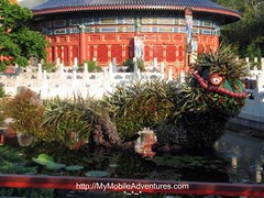 IMG_1142-EPCOT-China-topiary-dragon