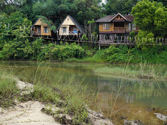 Our lodge at Khao Yai National Park (Bn) Tags: trekking thailand wildlife biking birdwatching saraburi nakhonnayok riverrafting khaoyainationalpark nakhonratchasima stunningscenery prachinburi ourgetaway ourparadise escapethehustleandbustleofbangkok thailandsfirstnationalpark accomodationatkhaoyaipark unspoiledjungle khaoyaihasspectacularscenery ourlodge naturalheritagesitesofasia evergreenrainforest barkingdeerserowsgibbonsmacaques malayansunbearsasiaticblackbearstigerleopard