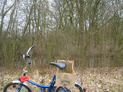Stick collecting (eirons) Tags: trees netherlands bike forest sticks groningen
