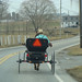 Amish Open Wagon