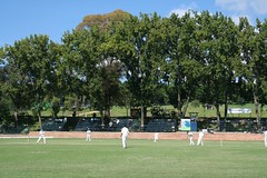 Wyn's team batting in Cricket against St Stithians (Vaughanoblapski!) Tags: cricket stdavids wyn ststithians