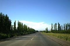 Río Negro avanza en la Ruta del Vino en el Alto Valle