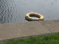 A Random Yellow Ring. (Ceiridwen) Tags: lake yellow path rings ripples southend southchurch