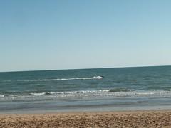 100_2091 (Seraphim2581) Tags: beach mexico rockypoint peasco