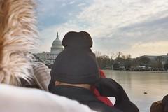 Inauguration 09 - 15 (ybbor) Tags: washingtondc dc washington obama inauguration inauguration09