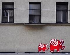 """großstadtelefanten in der alserstraße • <a style=""""font-size:0.8em;"""" href=""""http://www.flickr.com/photos/20176387@N00/3473543710/"""" target=""""_blank"""">View on Flickr</a>"""