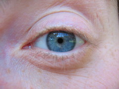 Bleu eye (Alison et Cedric) Tags: photochallenge 2009challenge day130eyes 2009challenge130