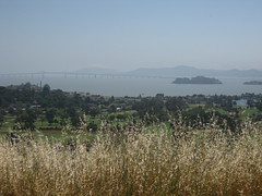 SF Bay from the North