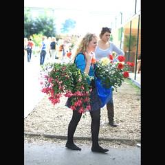 Chelsea Flower Show [13] (_nejire_) Tags: england woman plant flower london nature girl lady canon flora chelsea bokeh candid f16 10pm carlzeiss chelseaflowershow nejire 400d eos400d canoneos400d planart50mm mhashi carlzeissplanart1450ze