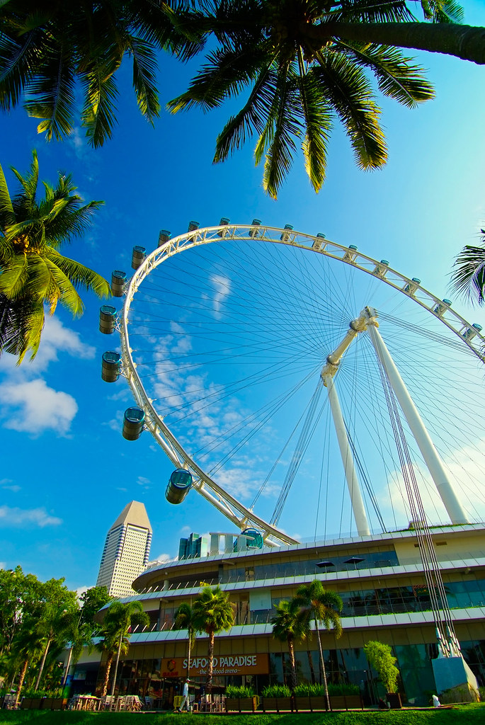 Singapore Flyer with Canopy Frame