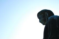 DAIBUTSU (mayor_of_clutch0625) Tags: blue sky japan nikon buddha daibutsu  kanagawa   hase   d60  kotokuin   kamkura