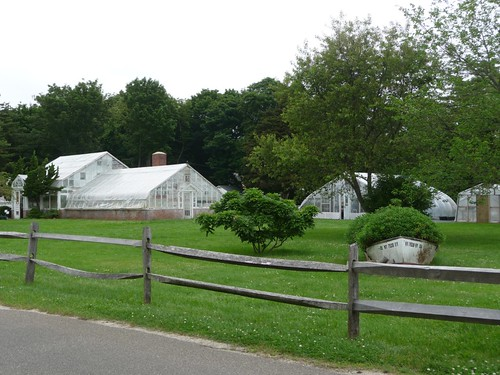 Meadow Edge Greenhouses