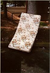 Sleeping (artistofmimicry) Tags: camera tree film against dumpster 35mm point shoot fuji olympus xa2 400 mattress leaning compact lean 1thou