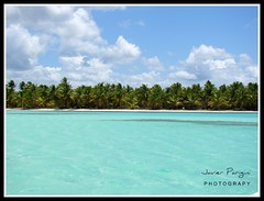 Laguna azul (..Javier Parigini) Tags: blue verde green water azul agua paradise palmeras javier paraiso puntacana republicadominicana islasaona saonaisland h50 parigini