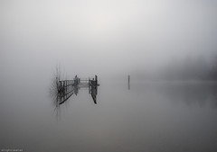 Fog+Flood+Lake (p.folrev) Tags: morning lake water fog flood foggy reflexions fo 2009 1k noff aplusphoto