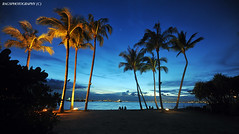 Coconuts in the Blue Hour :o) (Ragstatic) Tags: city longexposure morning travel light sunset sea sky sun seascape color reflection beach water colors clouds sunrise relax landscape happy dawn photo still nikon singapore rocks exposure peace nightshot rags famous scene calm photograph serene sentosa dri hdr stockphoto blending singaporecity d700 singaporelandscape bluhour singaporenightshot singaporeseascape
