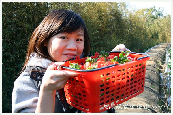 090117_11_採草莓