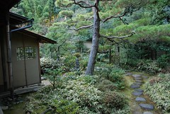 12-Nansen-in tea path