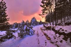 cesane 01 (raffaelemariotti) Tags: winter sky snow clouds purple wildlife urbino cesane d300 sigma1020mmf456exdchsm