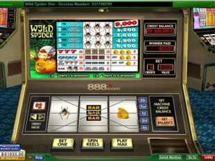 wild spider slot game online review