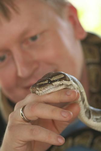 37/365 - The husband and a python